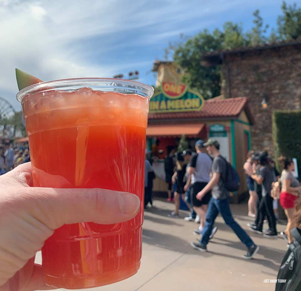 Disneyland Food and Wine Festival Watermelon Drink