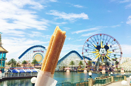 2018 Guide to Disneyland Churro at Paradise Pier