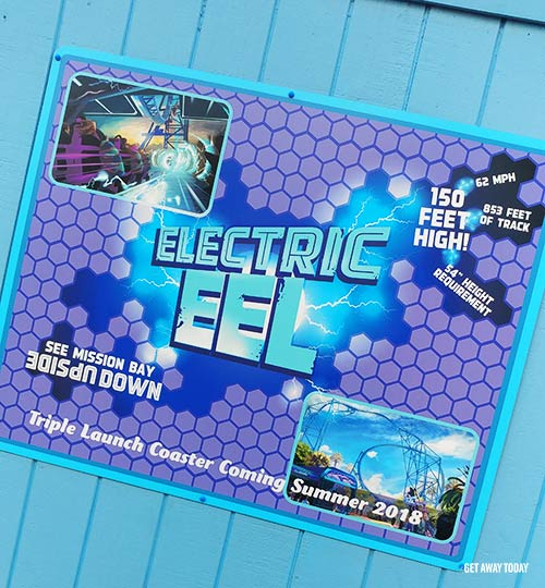 7 Things You Didn't Know About SeaWorld San Diego Electric Eel