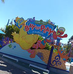 Everything You Need to Know About the Bay of Play at SeaWorld San Diego