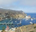 Top 5 Things to do on Catalina Island