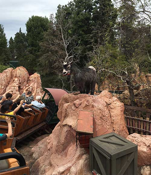 Big Thunder Mountain Railroad at Disneyland Dynamite Goat