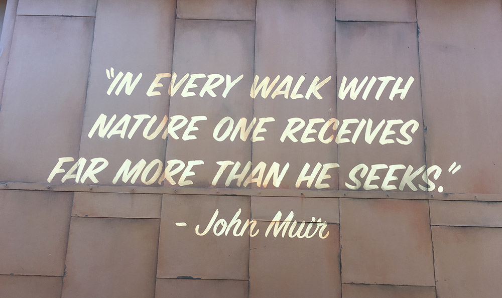 Facts About Soarin' Over the World - John Muir Quote