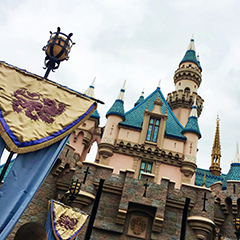 14 Secrets of Disneyland