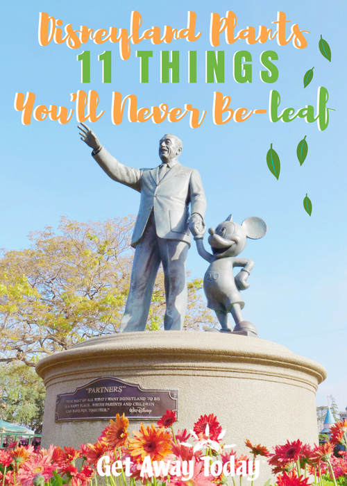 Disneyland Plants 11 Things You'll Never Be-leaf || Get Away Today