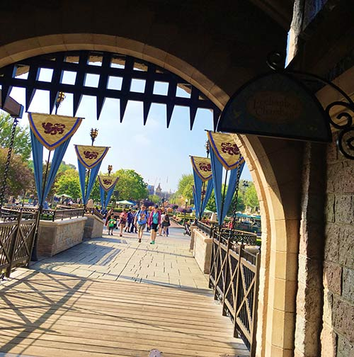 Fantasyland Secrets - Drawbridge
