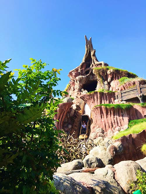 Educational Disneyland Vacation Splash Mountain