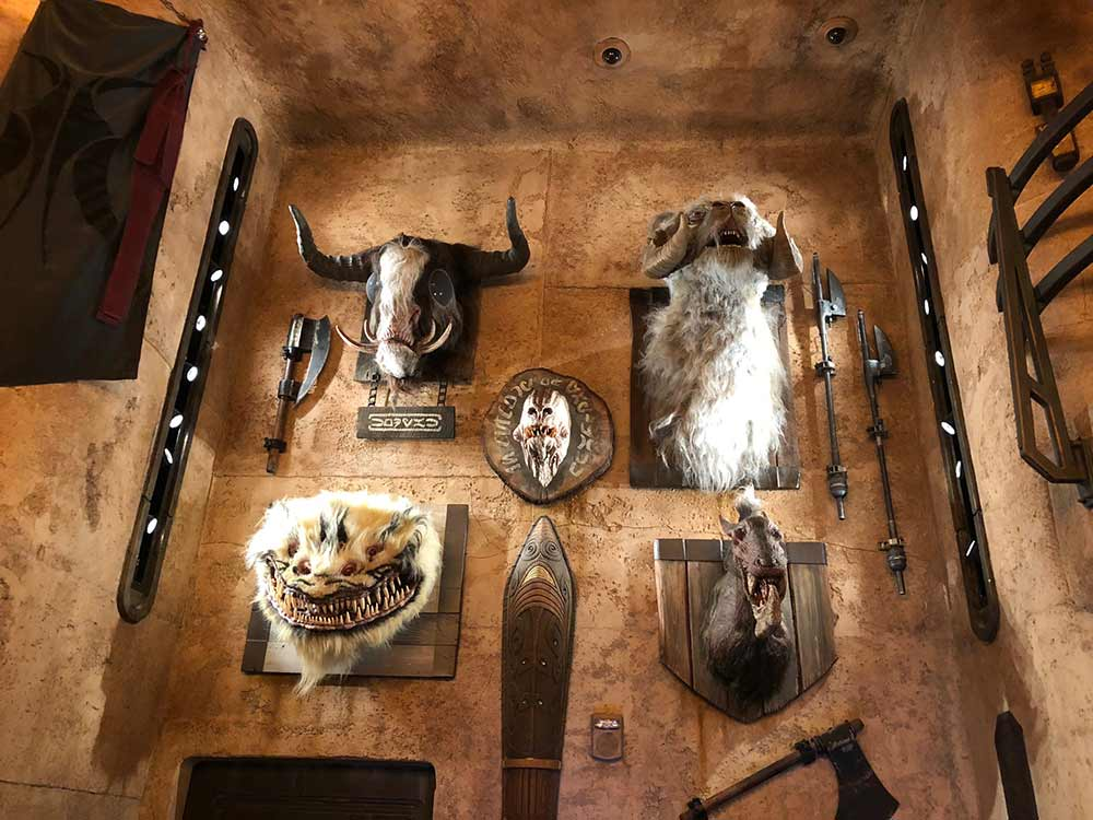 mounted creatures on wall