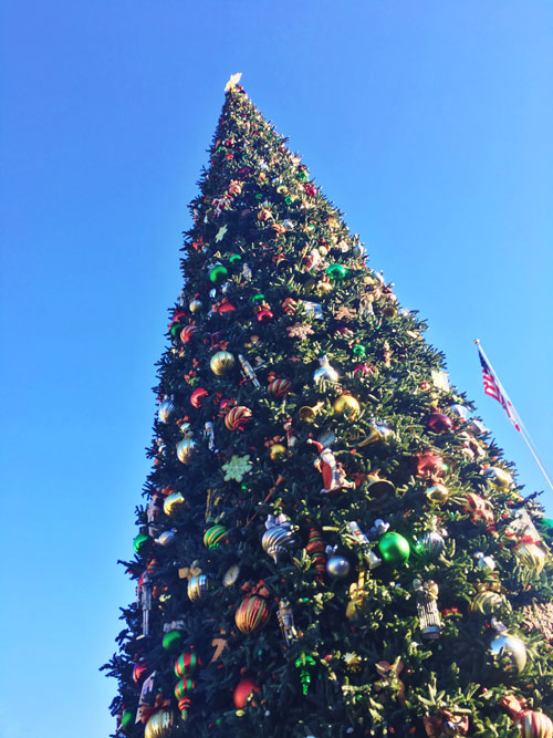 Christmas Tree at Disneyland Main Street USA
