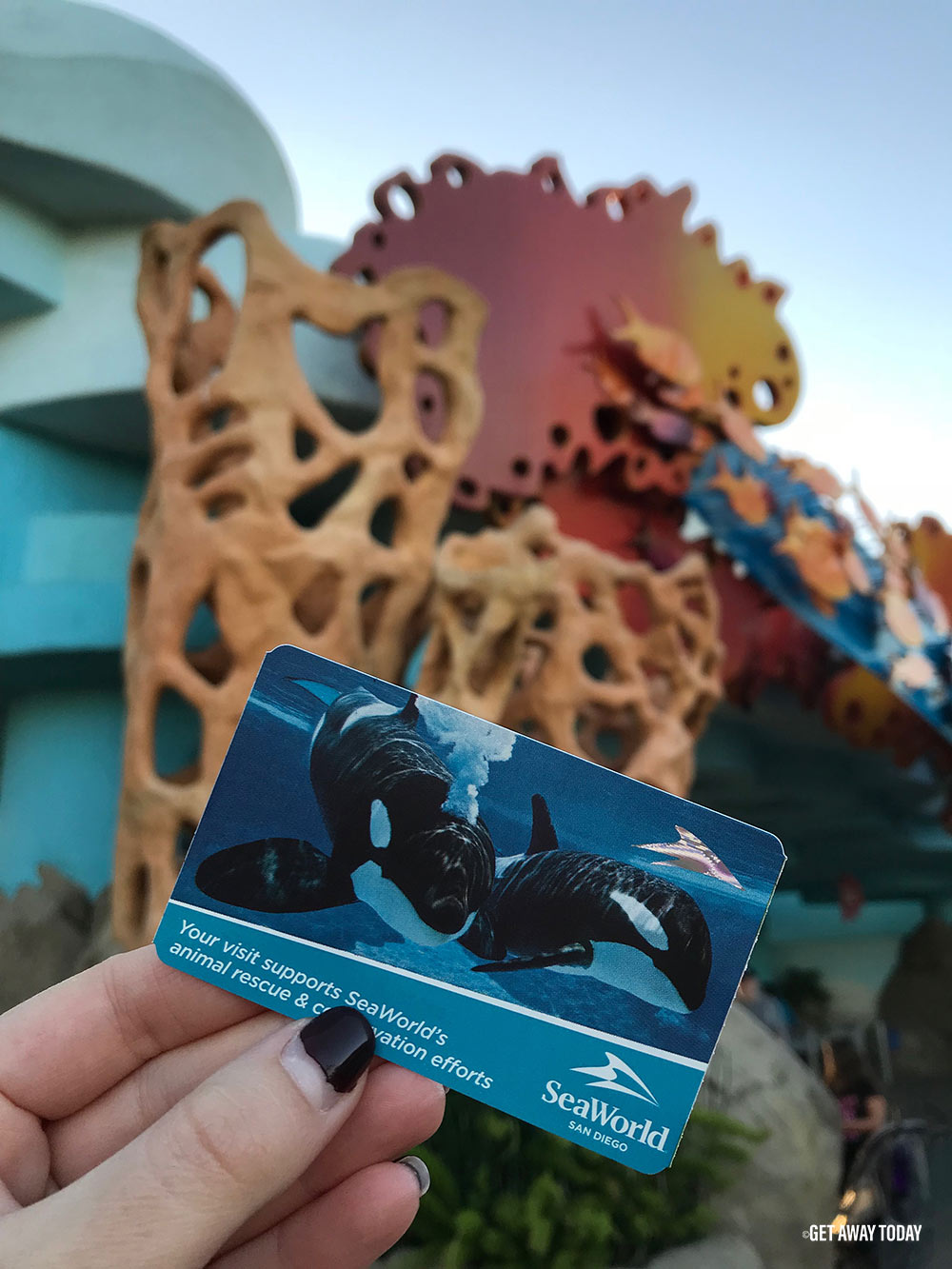 How To Save At Seaworld San Diego