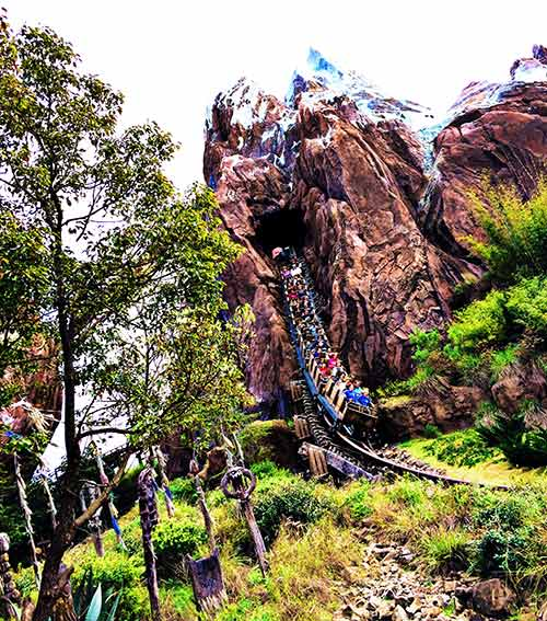 Surviving Disney World with Toddlers and Babies Expedition Everest