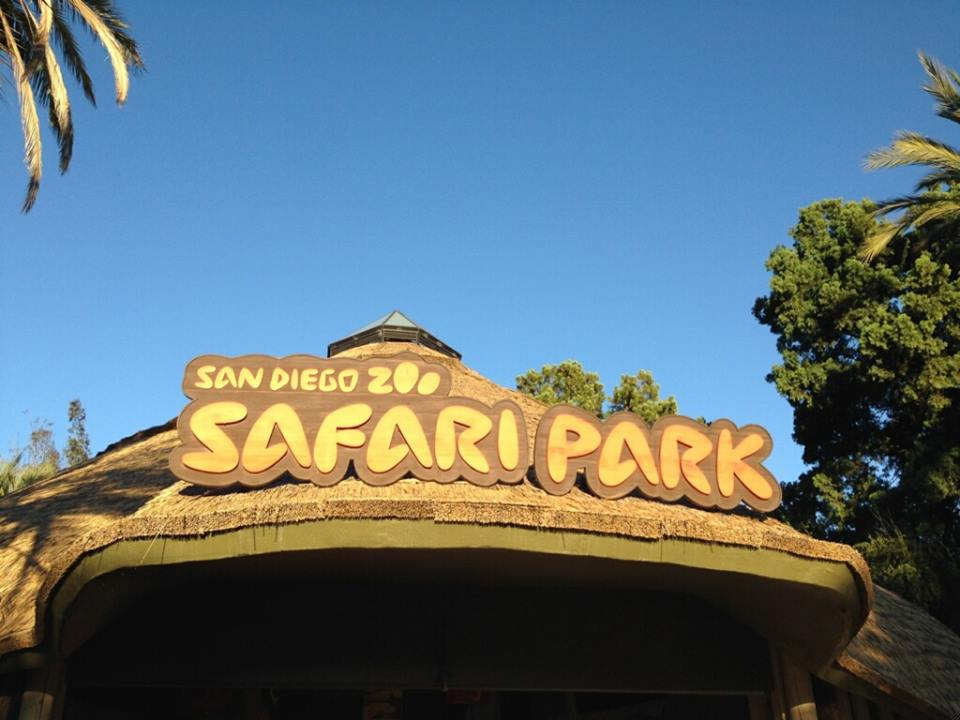 Celebrate Halloween in San Diego Safari Park