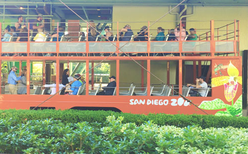 Kids Free San Diego Zoo Bus
