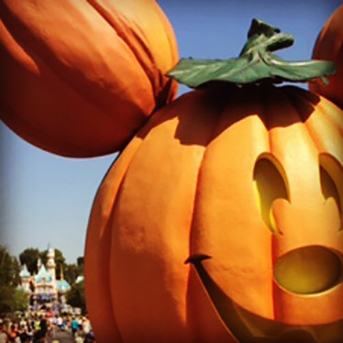 Latest Disneyland Changes Halloween Time is coming
