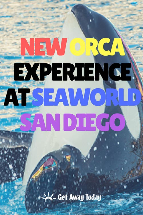 New Orca Experience at SeaWorld San Diego || Get Away Today