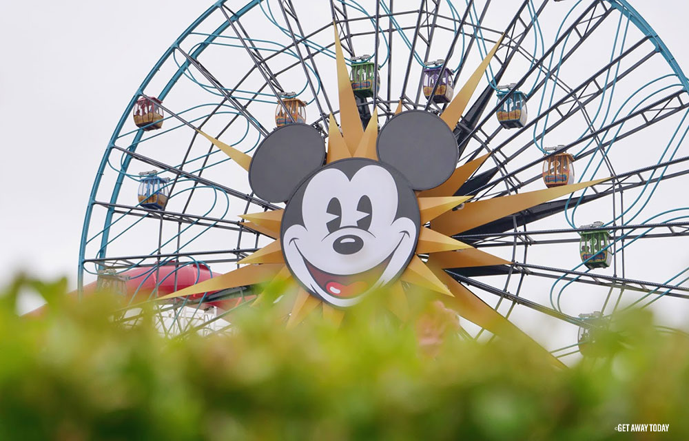 Reasons to go to Disneyland this spring Wheel
