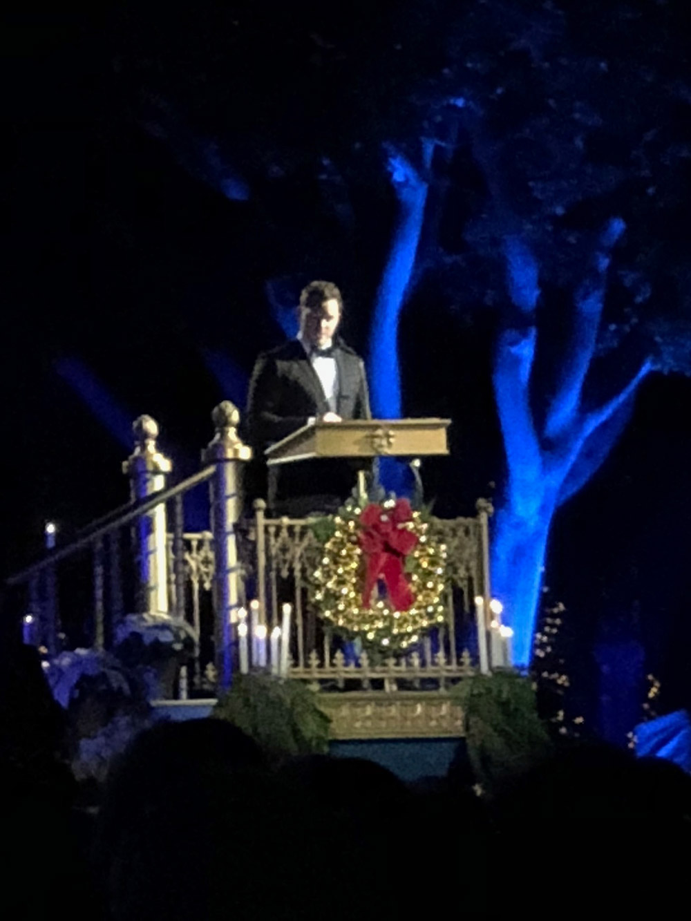 Special Events at Disneyland A Guide to Amazing Fun Chris Pratt
