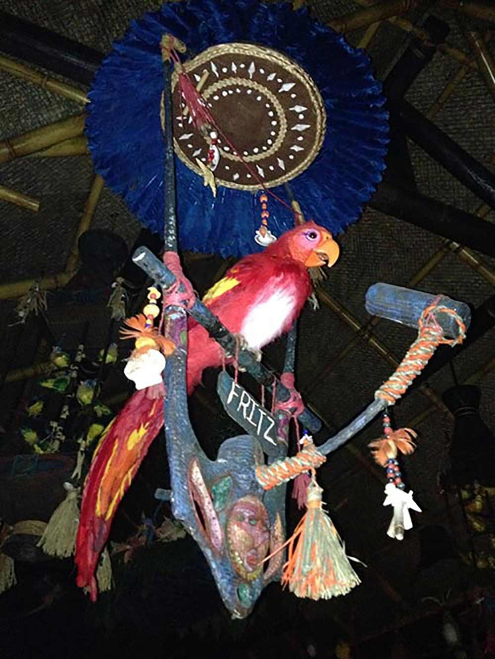 Tiki Room Disneyland red parrot in the show