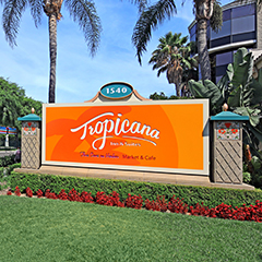 Tropicana Inn & Suites Anaheim Review