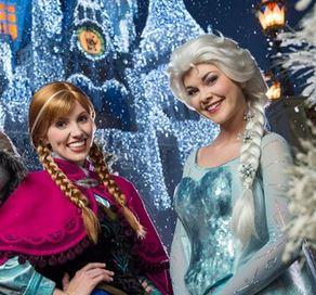 Everything Frozen At Walt Disney World Resort This Winter