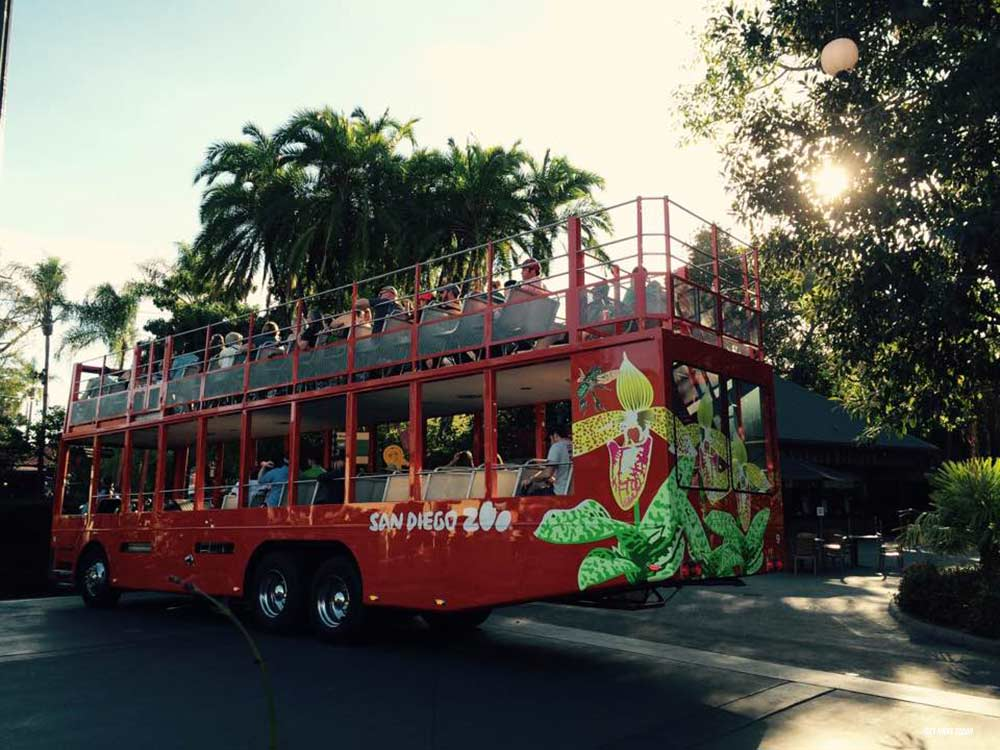 San Diego Zoo Bus