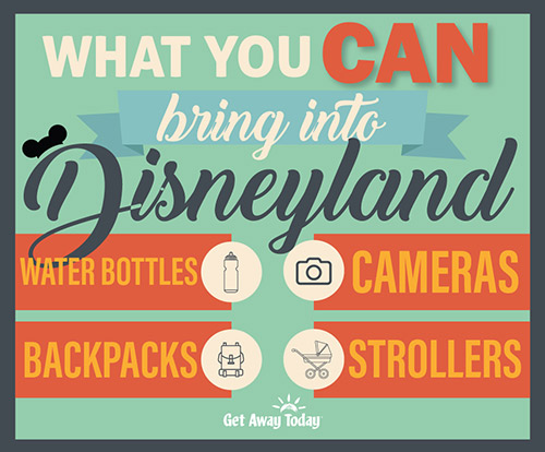 What You Can Bring Into Disneyland