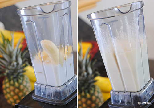 Disney Dole Whip Recipe Blender