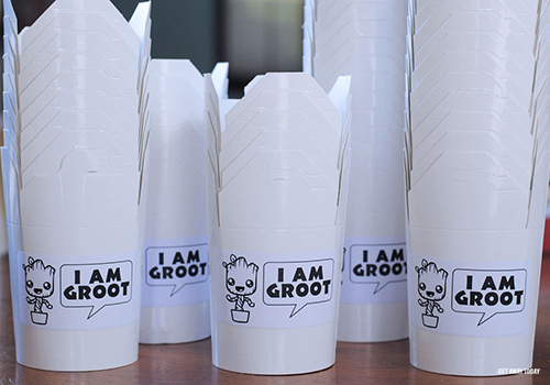 Groot Party Boxes
