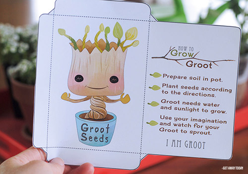 Grow Your Own Groot Cut