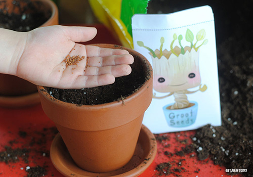 Grow Your Own Groot Seeds