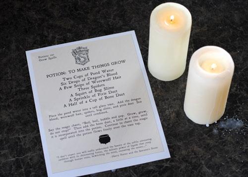 Snape S Magic Potion With Free Printable Recipe
